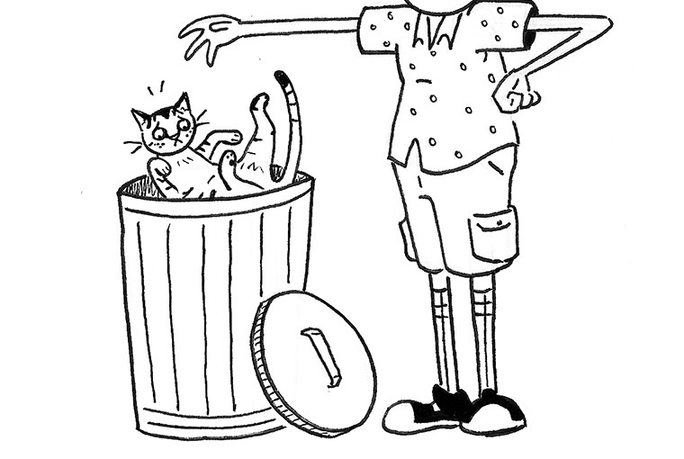 All Cats Are Trash